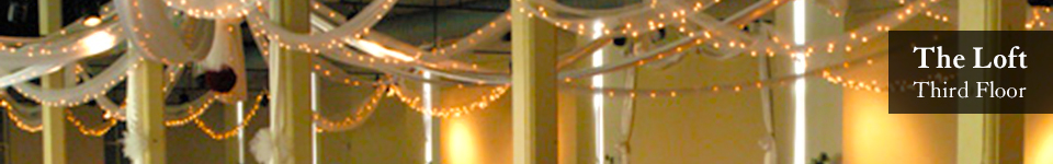 artisan ceiling